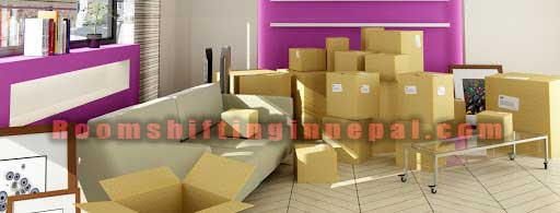 best movers and packers in nepal